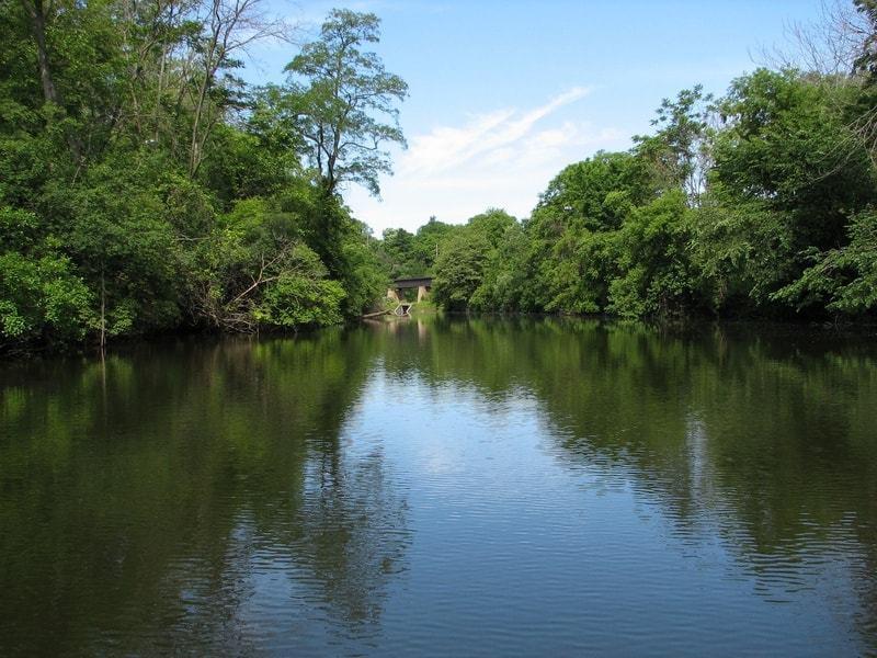 Argo Pond Image