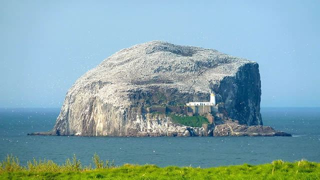 Bass Rock Lauder Legend Image