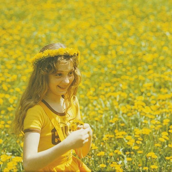 Dandelion Picker Image