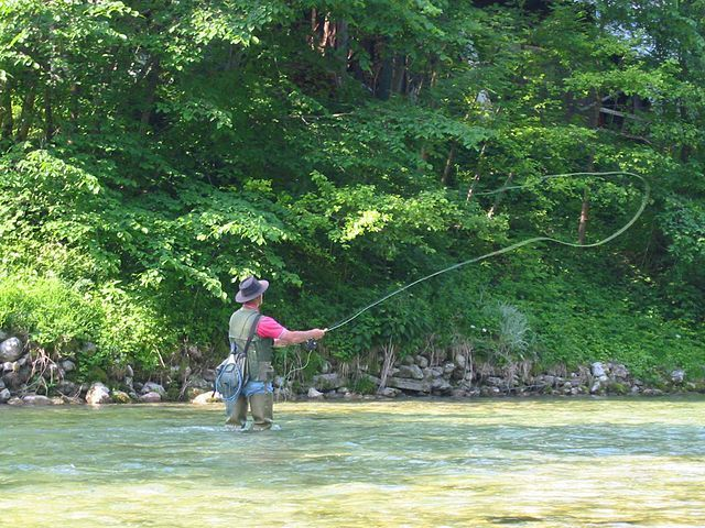 Fly Fisher Image