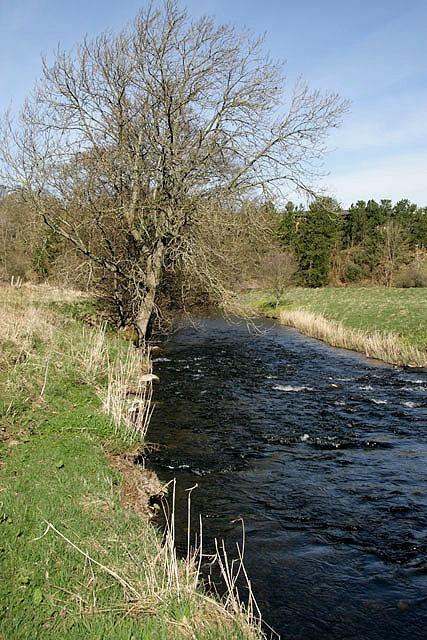 Gala Water Image