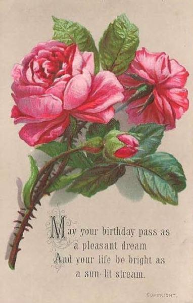Wilf's 80 Greeting Card Image