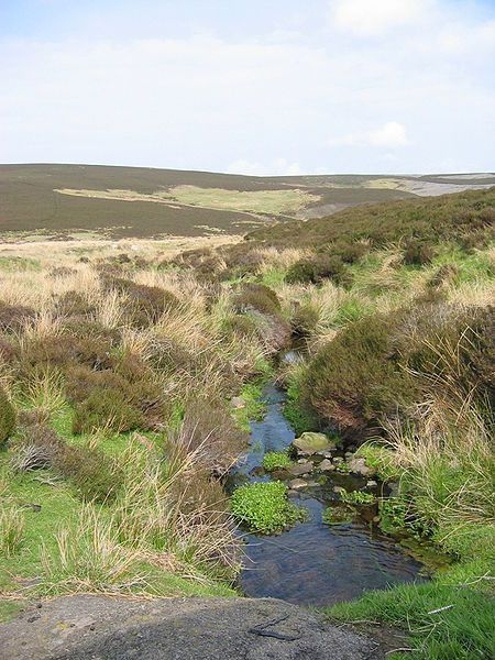 The Lammermuir Hills Image