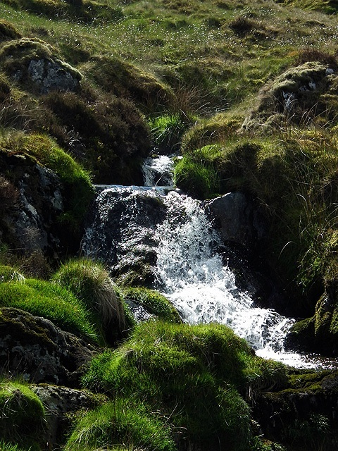 Mountain Stream Image