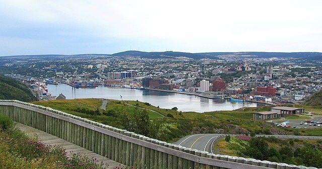 Newfoundland Image