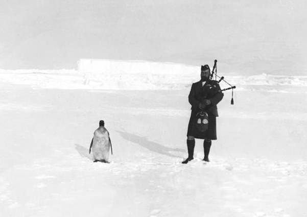 Piper And The Penguin