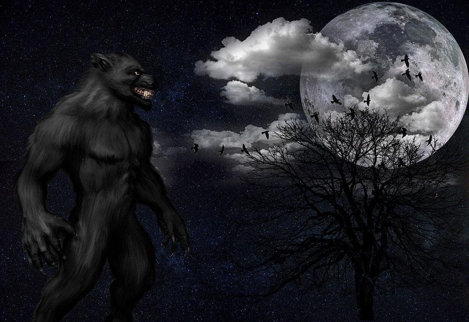Scottish Werewolf
