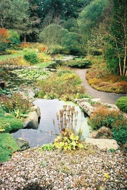 St Andrew's Gardens Image