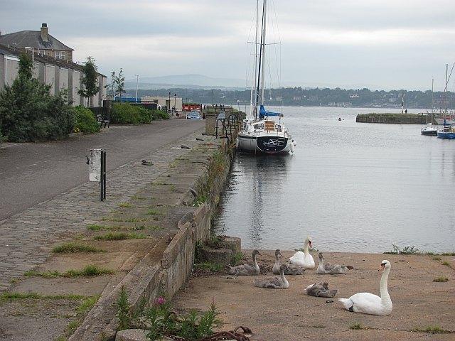 Tayport Harbour Image