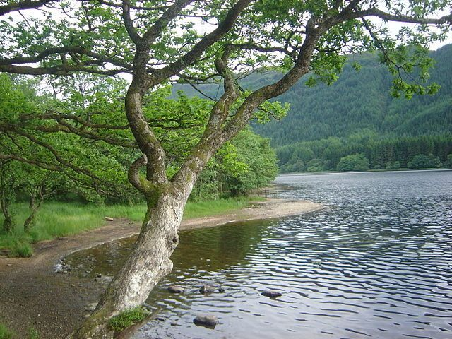 The Trossachs Image