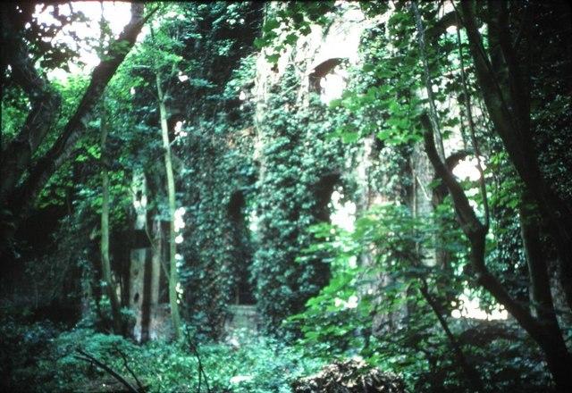 Tutsham Mill Image