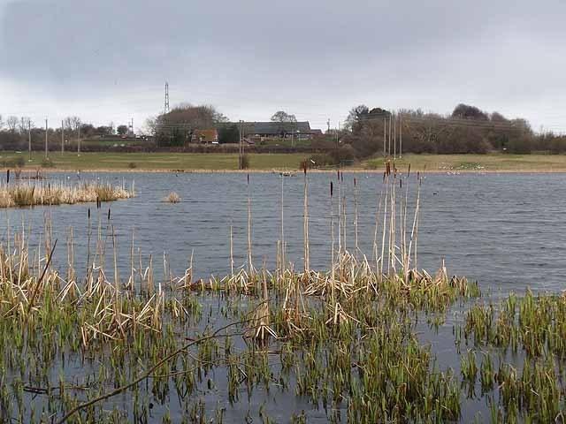 Tyneside Image