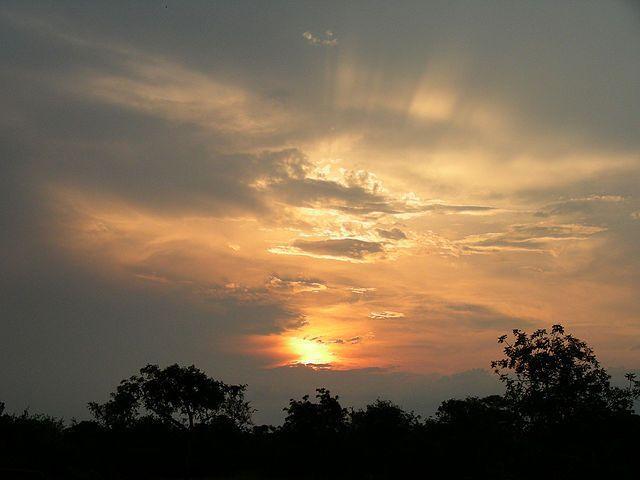Under African Skies Image