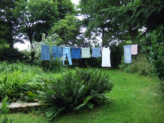 Washing Line Image