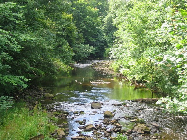 The Water Of Leith Image