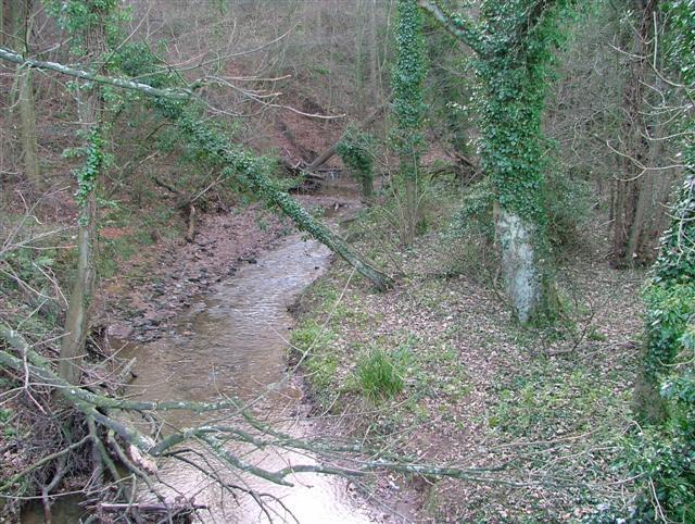 Waterfall Gill Image