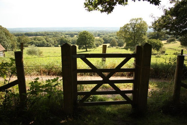The Weald Image