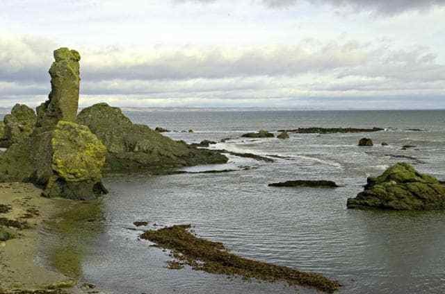 The Whale Rock Image