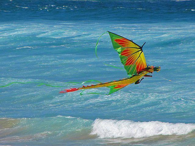 Wind Dragon Image
