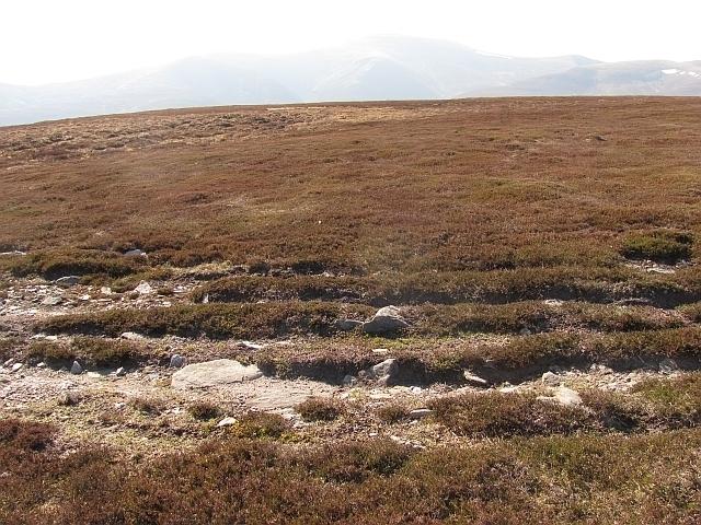 Wind On The Heath Image