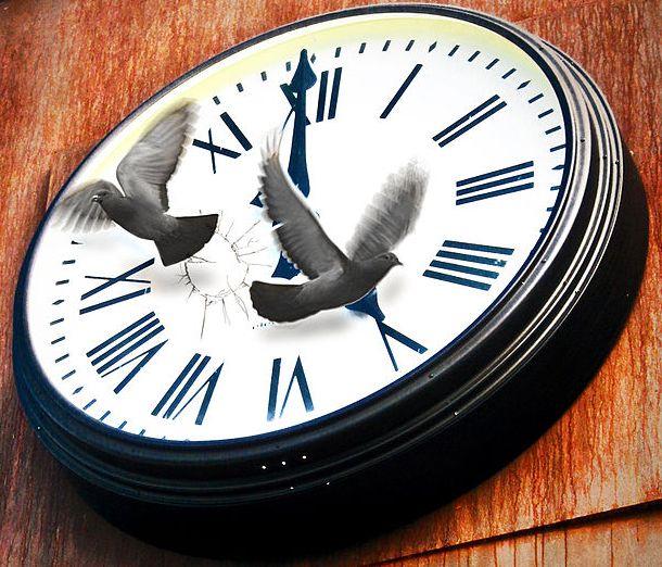 Time Flies Image
