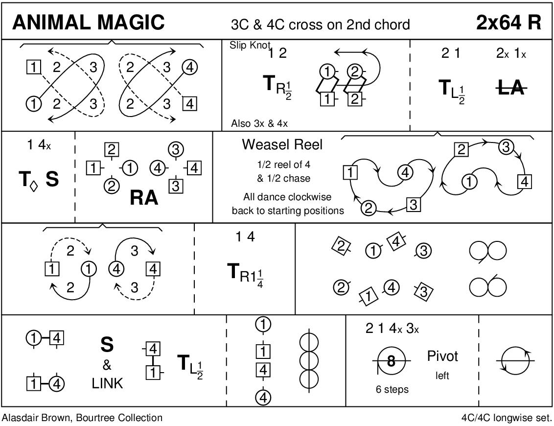 Animal Magic Keith Rose's Diagram