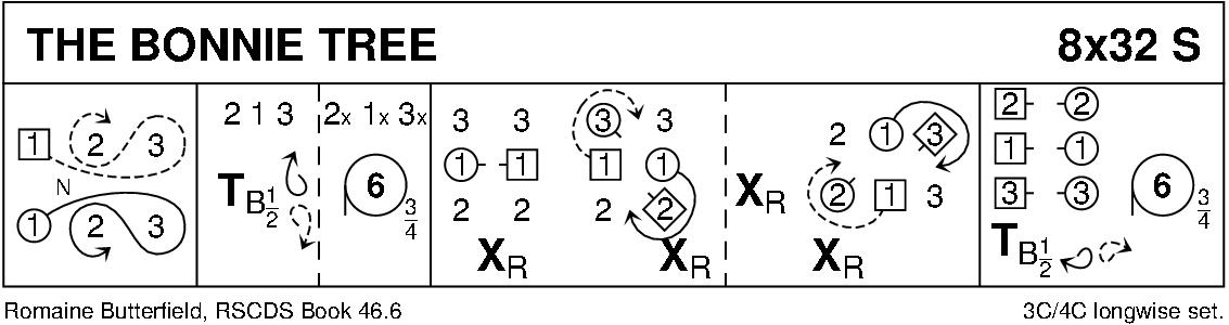 The Bonnie Tree Keith Rose's Diagram