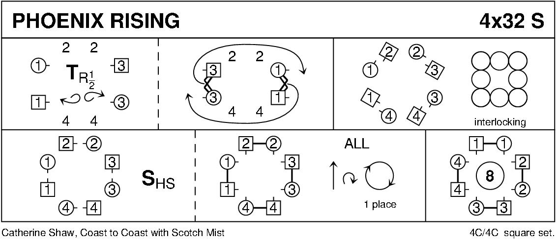 Phoenix Rising Keith Rose's Diagram